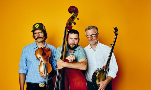 The Lonesome Ace Stringband and The Magpies