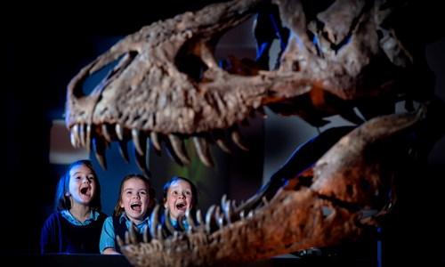 T. rex-tastic Family Fun Night! - session 1