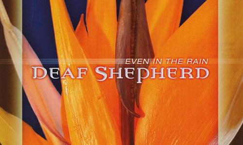 Deaf Shepherd and Alden Patterson & Dashwood
