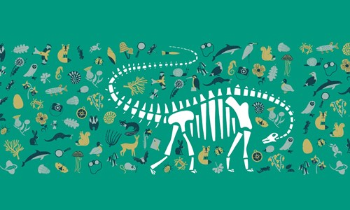 The Life and times of Dippy the Diplodocus
