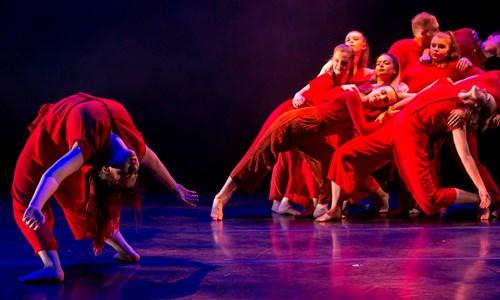 Y Dance presents Project Y