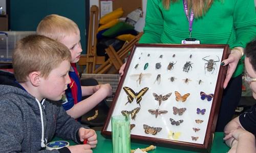 Weekly Store Hunters Family Programme- Bugs n Beasties