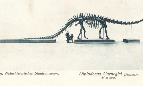 Scottish Dinosaurs