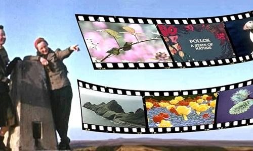 Online: Wild Scotland on Film