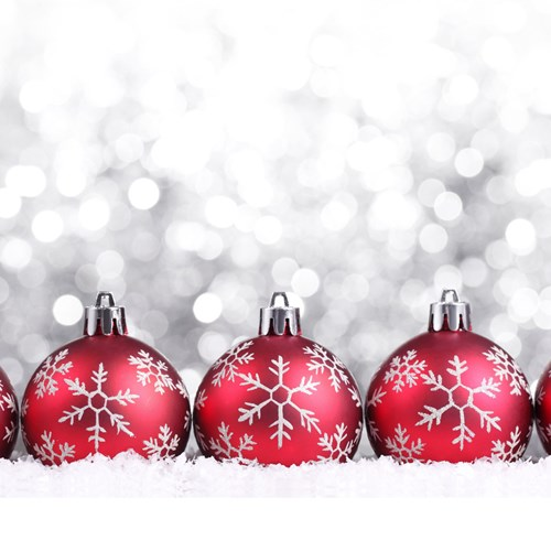 The Twelve Days of Christmas Festive Family Tours