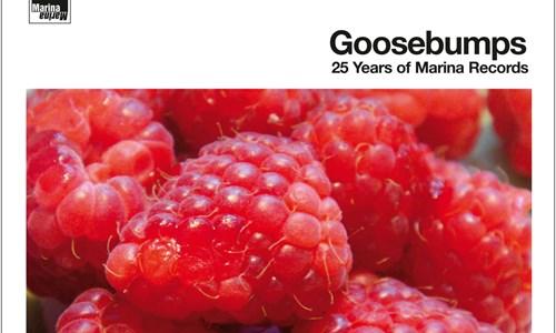 GOOSEBUMPS: 25 Years of Marina Records (Krach Auf Wiedersehen!) and Fenella