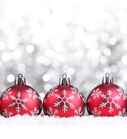 The Twelve Days of Christmas Festive Family Tours   at Glasgow Museums Resource Centre image