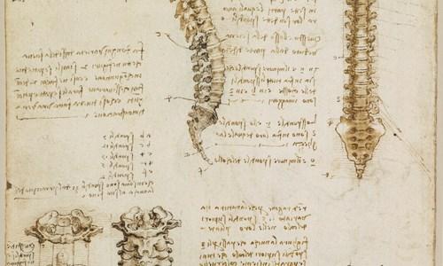 Leonardo Life Drawing with ATYN