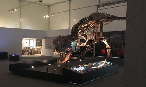 T. rex in Town - Autism Friendly Sessions