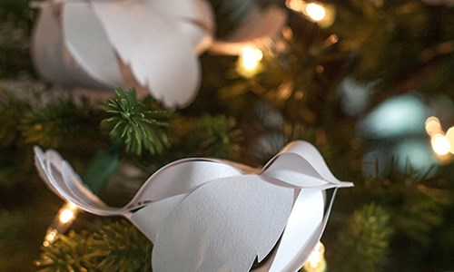 The Festive Bird That Never Flew