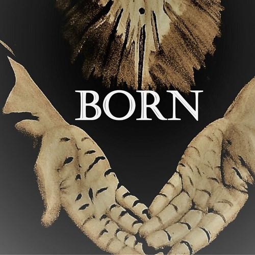 Surge Festival: Born